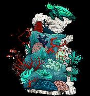 Aquariengestaltung
