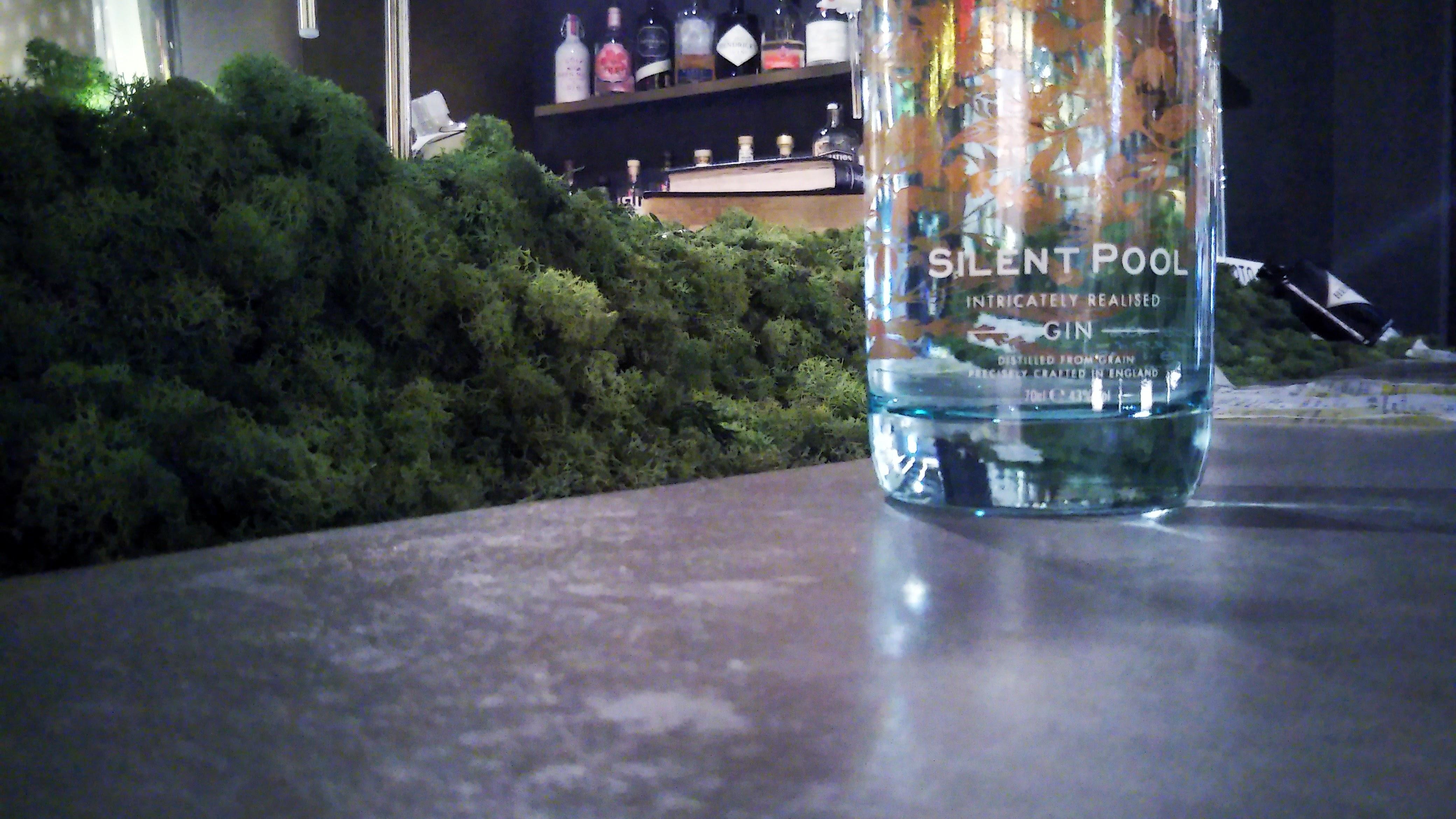 SILENT POOR GIN / サイレントプール