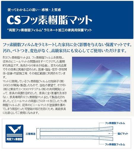 cs3.jpg