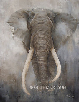 Tableau Elephant TIM