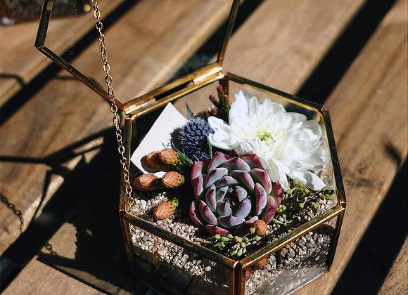 Succulent Flower Box 多肉植物花盒