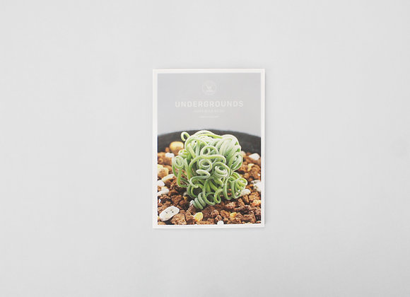 UNDERGROUNDS - Cape Bulb Book