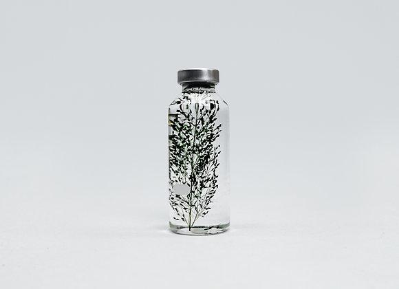 Slow Pharmacy - Plant Specimen 30ml