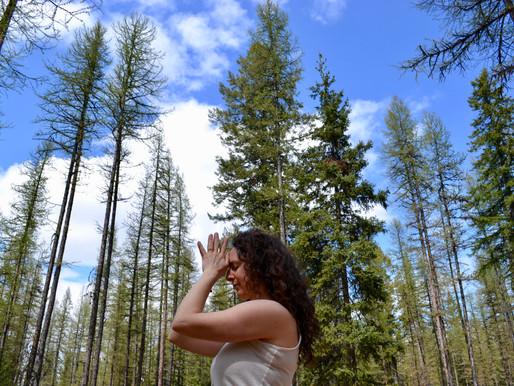 Ancestral Healing Through Land Stewardship