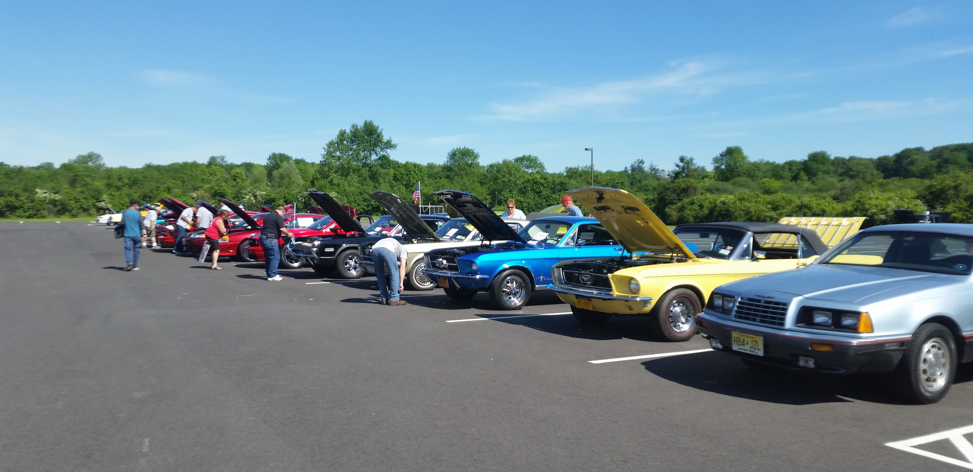 mustang club of orange county