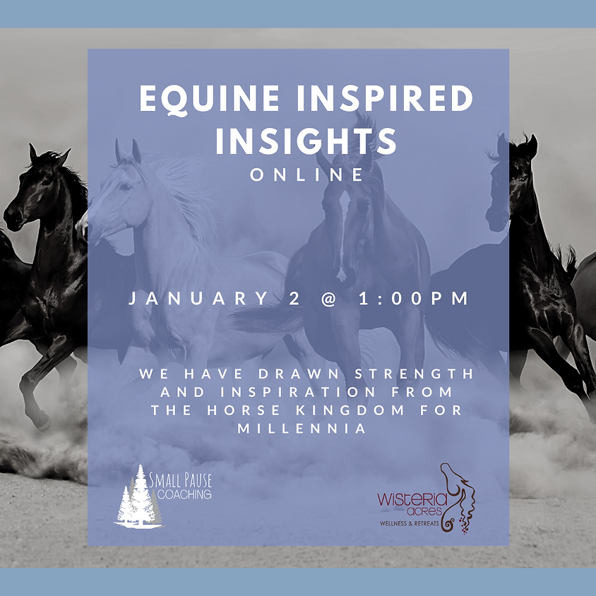 Equine Inspired Insights