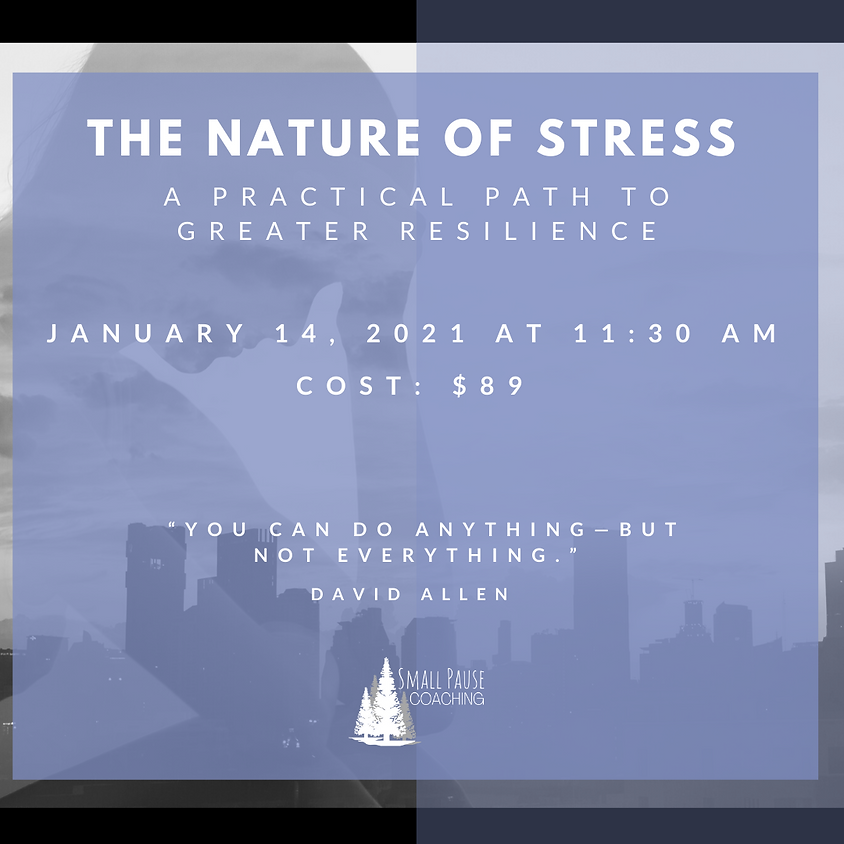 Lunch & Learn Series - The Nature of Stress