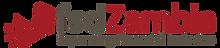 fsdz logo.png
