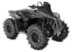 Renegade-X-mr-1000R-Black-Platinum-Silve