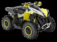 2019-Renegade-Xxc-650-Black-Grey-Sunburs