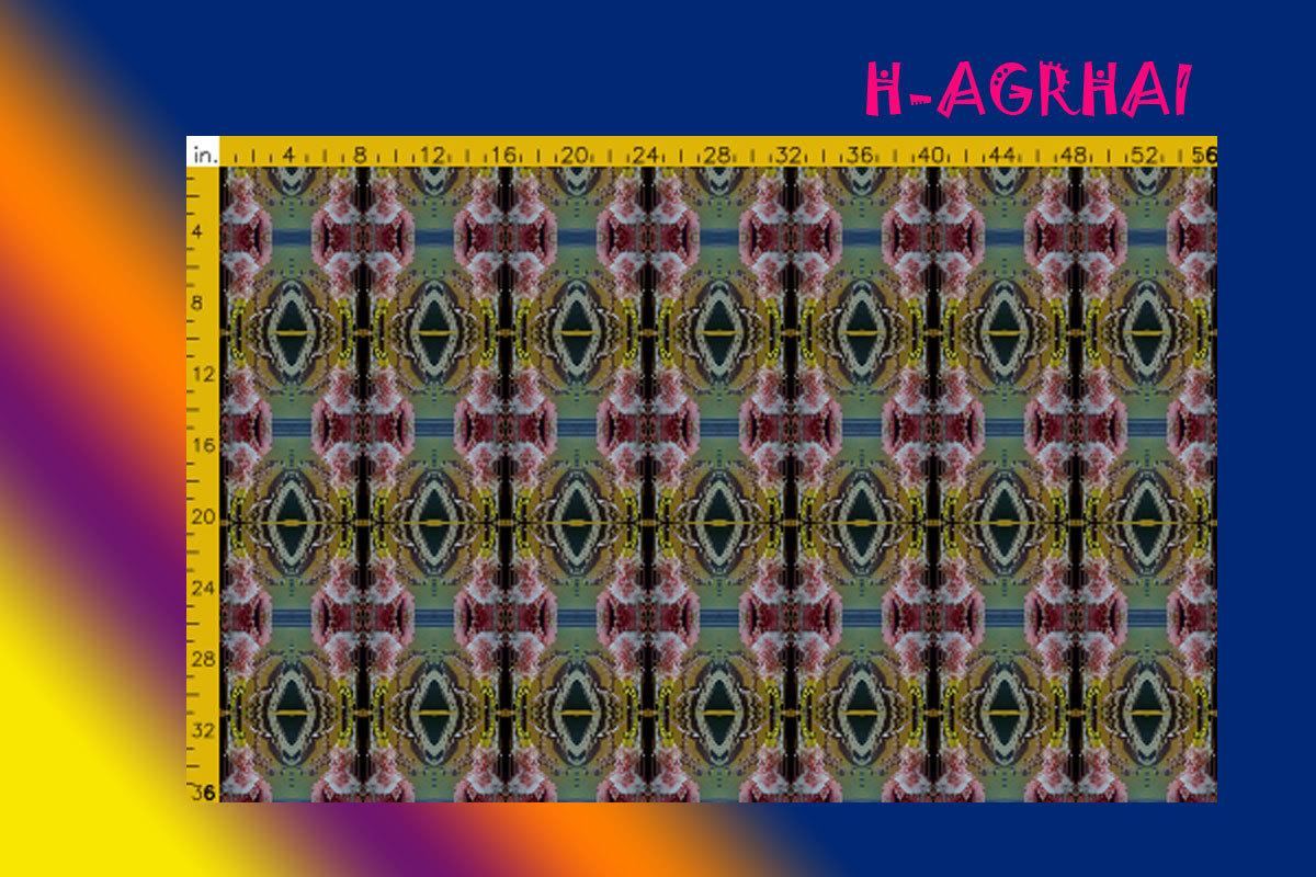 H-AGRHAI.jpg