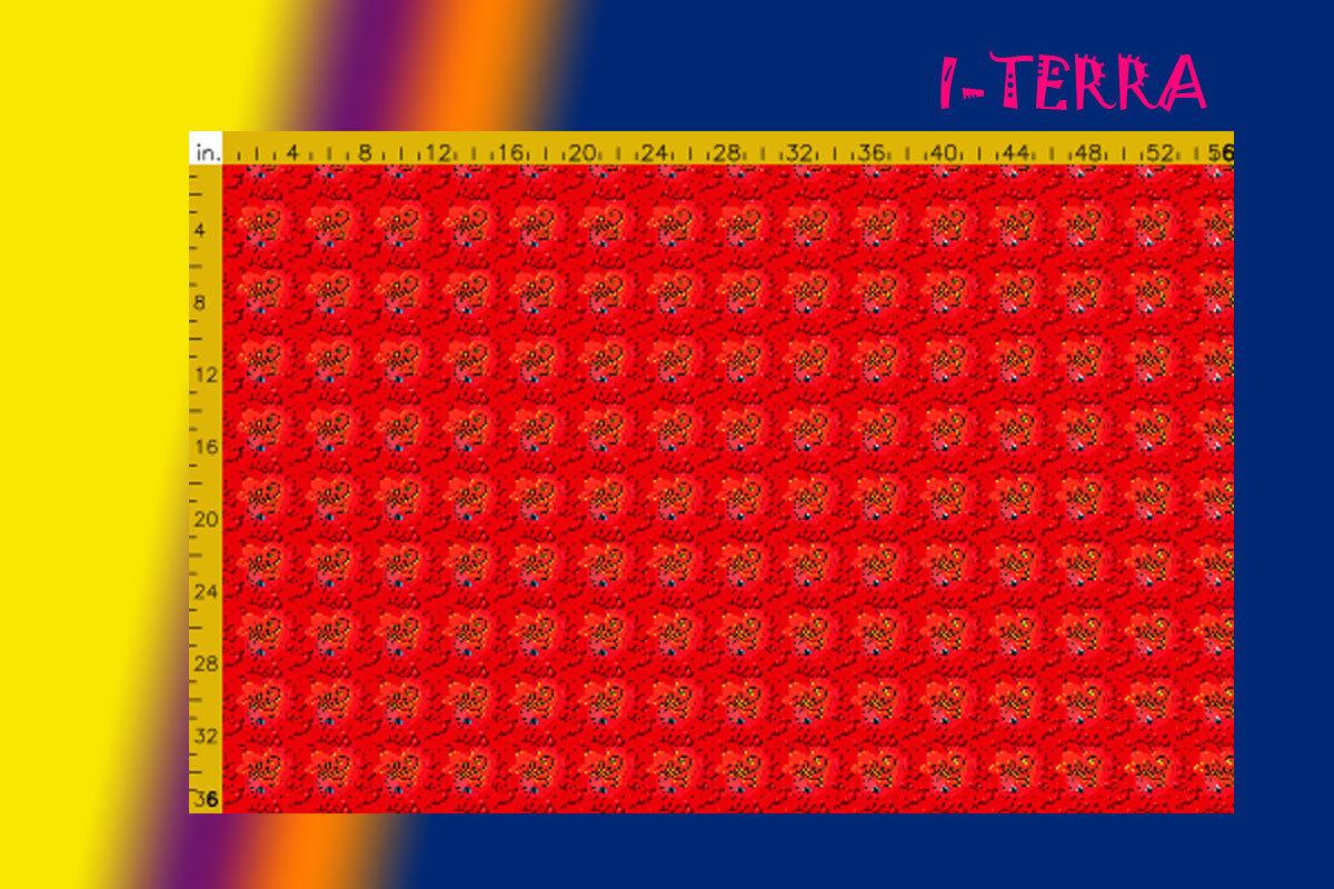 I-TERRA.jpg
