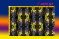 H-AGBLUB.jpg