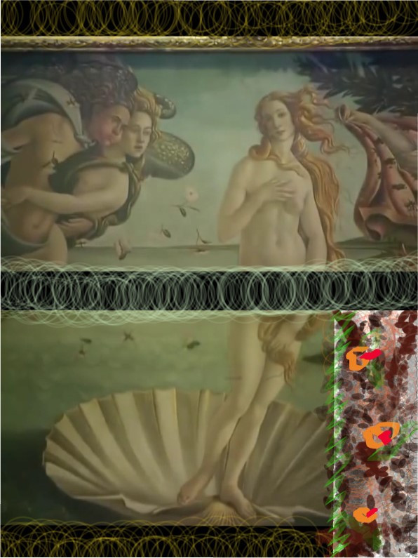 depicting-venus-2.jpg