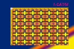 I-CATGI.jpg