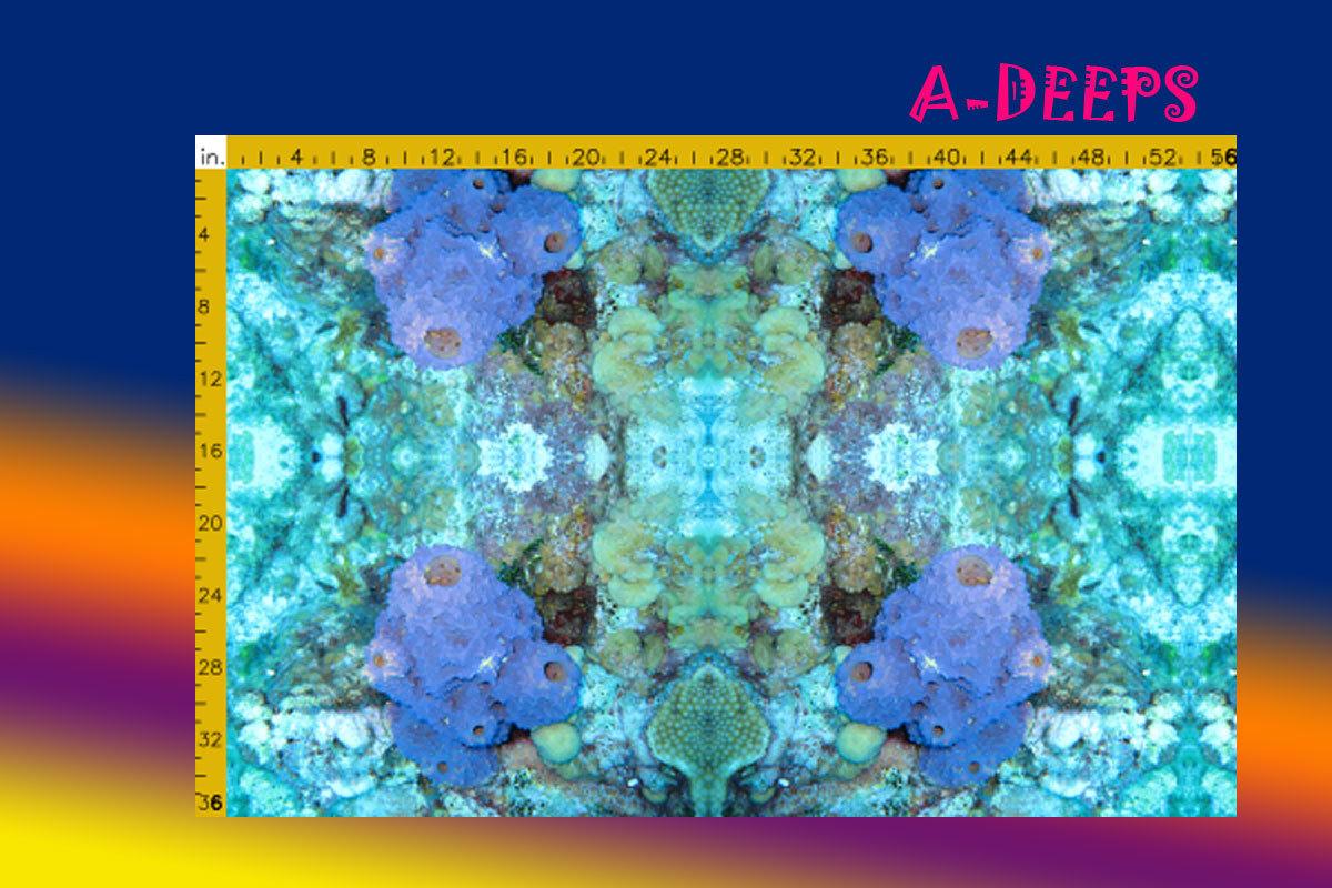 A-DEEPS.jpg