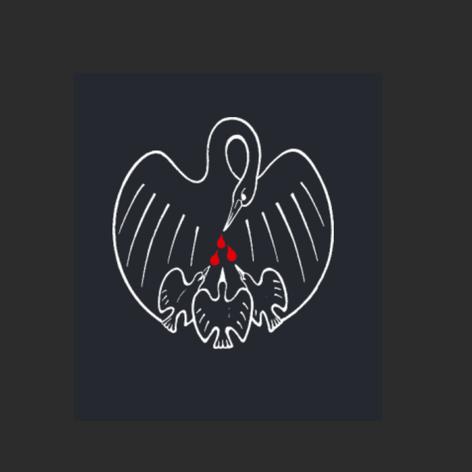 Copywriting Stichting Pelicano