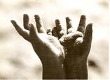 mains.png