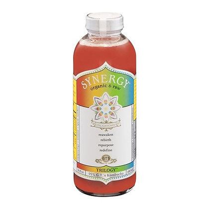 GT's Enlightened Synergy Organic Trilogy Raw Kombucha 16 fl oz