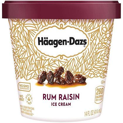 HAAGEN-DAZS Rum Raisin Ice Cream 14 fl oz