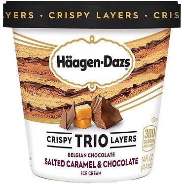 Haagen-Dazs Trio Belgian Chocolate/Salted Caramel/Chocolate Ice Cream 14 fl oz