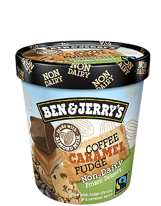 Ben & Jerry's Non-Dairy Ice Cream Coffee Caramel Fudge