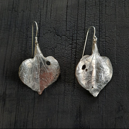 Kawakawa Leaf Earrings - small