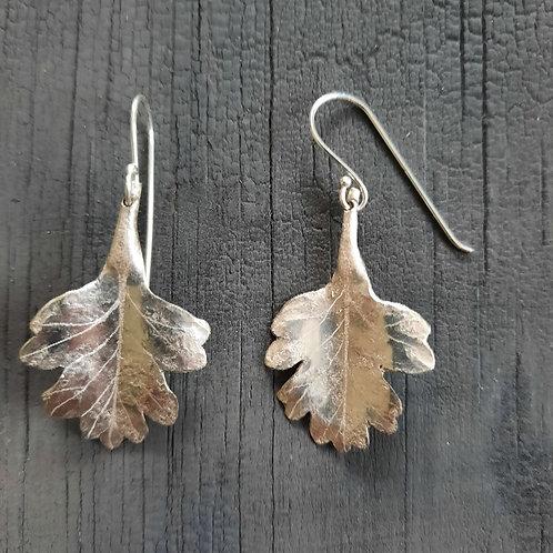 Hawthorn Leaf Earrings  - small