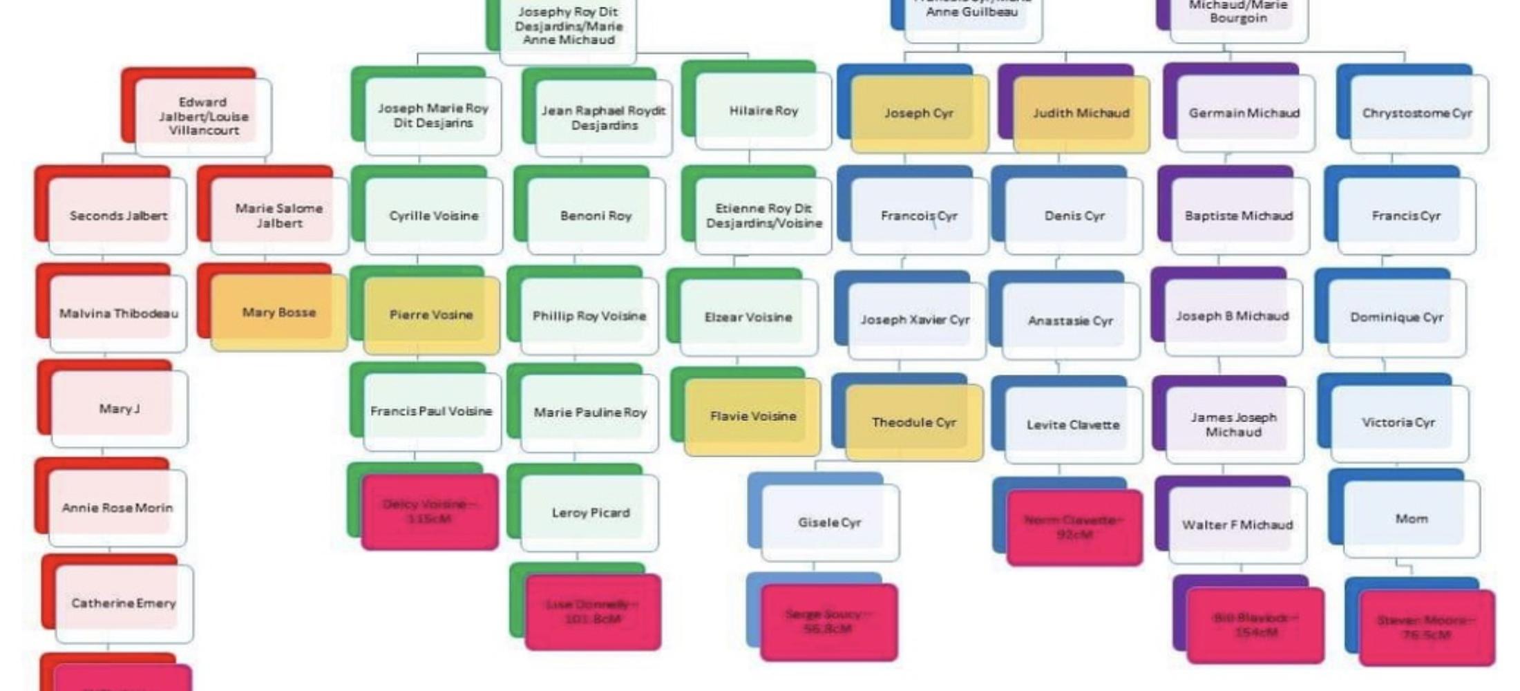 Investigative Genetic Genealogy