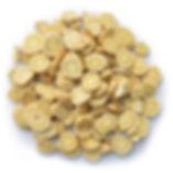 Astragalus.jpg