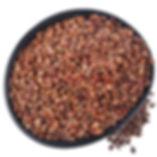 Grape-seed-extract.jpg