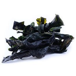 Kelp-extract-1.jpg
