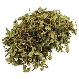 Coin-leaf-Desmodium.jpg