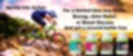 Spring Banner_1.jpg