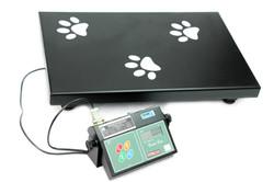 Plataforma Pet