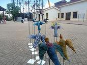 πουλιά-11.jpg