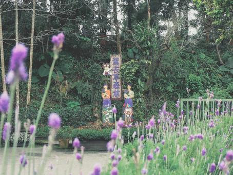 臺灣薰衣草森林的文化產業故事 - 抱著初心栽種幸福
