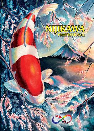 Nijikawa Professional