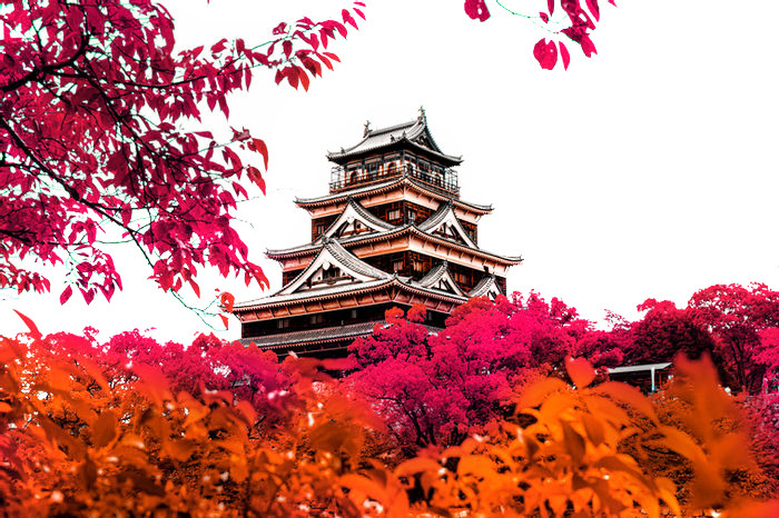 JapanPicBeauty.jpg