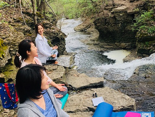 Earth Meditation & Cleansing Day