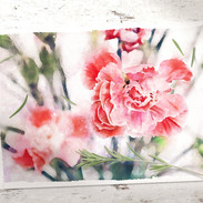 artflower02_edited.jpg