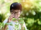 shutterstock_606261857 (1).jpg