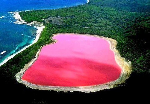 African Bubble Gum Lake Drying Up.