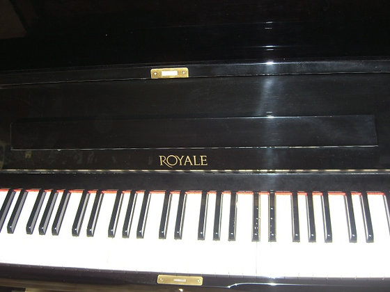 Royale RS21 121CM  nero lucido