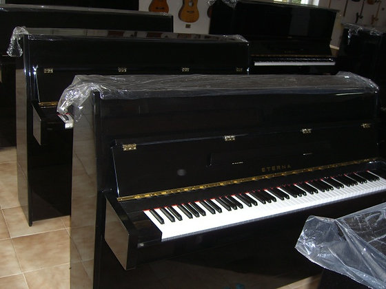 Yamaha Eterna 110 B1