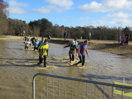 A Dark Tale of Sibling Rivalry in the Mud of Aldershot