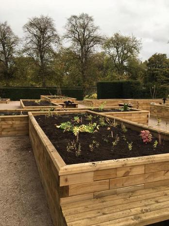 Physic Garden Beds
