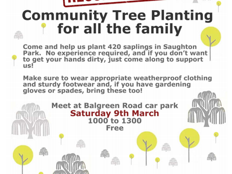 RESCHEDULED! Community Tree Planting - Saturday 9th March.