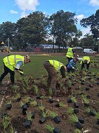 Playpark Planting.jpg