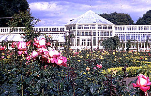 Saughton Rose and Winter Garden.jpg